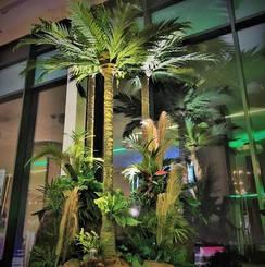 Jungle Event Feature