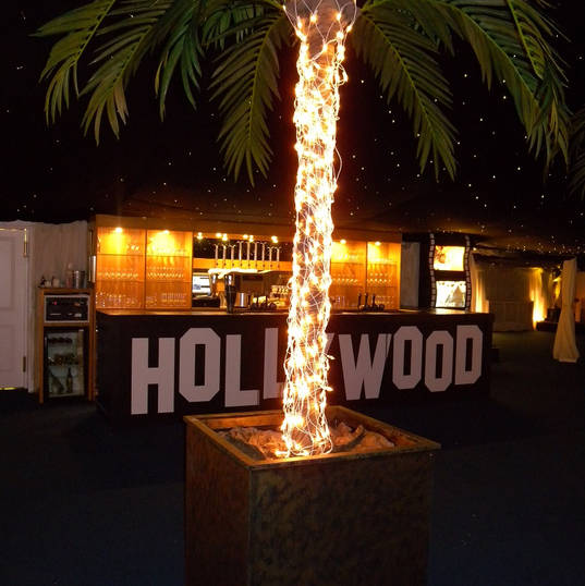 Lit up Palm Trees - Hollywood Boulavard