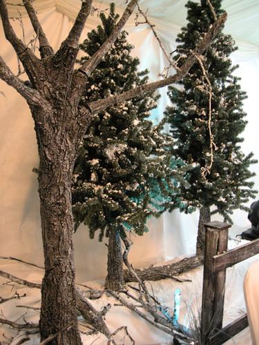 Deciduous & Fir Tree Dressing.jpg