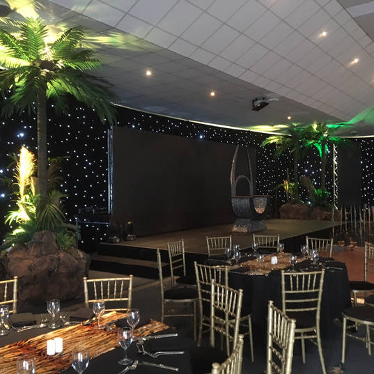 Jungle Themed Stage & Set With Stat Cloth