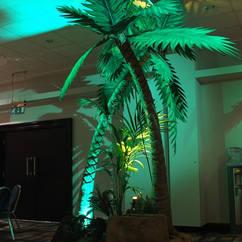 Palm Tree Cameo