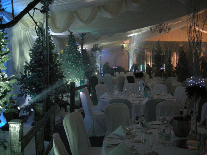 Decidious tree prop hire - Staging Services