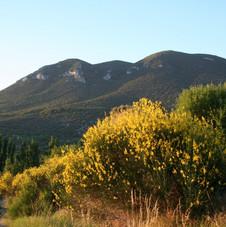 La belle montagne