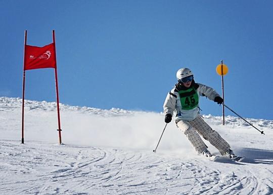 skiingPM.png