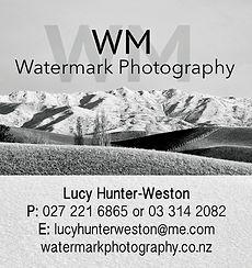Wynn Williams.jpg