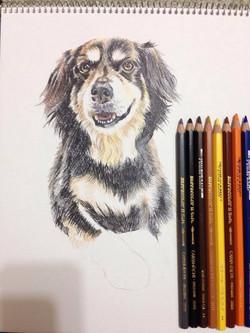 EET Student Painting Dog 4