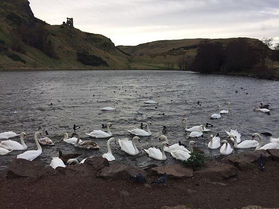 Edinburgh  愛丁堡 亞瑟座 湖景