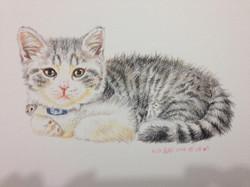 EET Student Painting 2