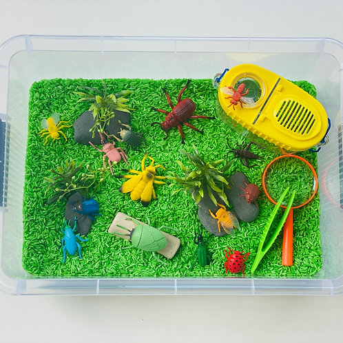Preorder - Insect Sensory Kit