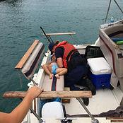 Marine first aid.jpg