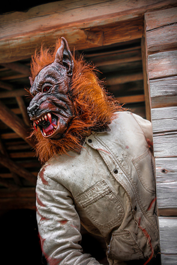 Jon_s Wolf.jpg