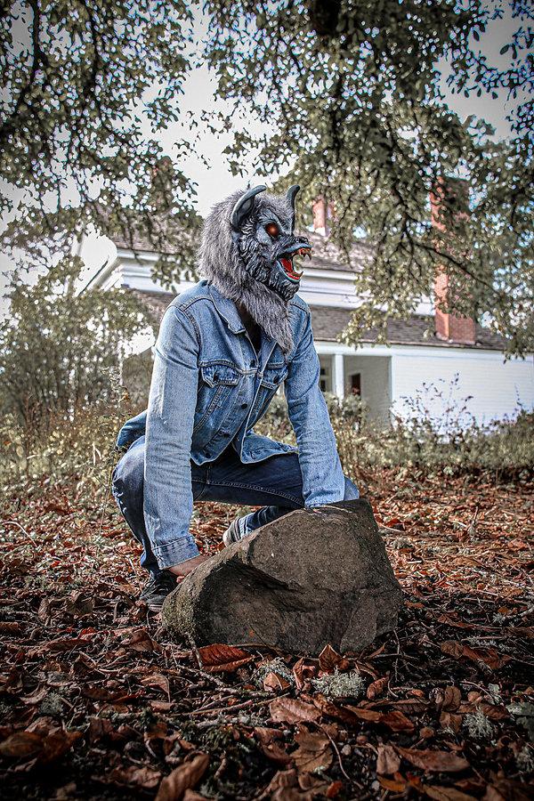 Drew's wolf.jpg