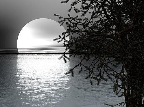 """Moon Water"" Aromatherapy Blend ©  2oz."