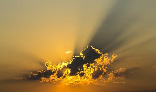 """Sunshine"" Aromatherapy Blend © 4oz."