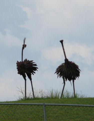 Ostrich Sculpture