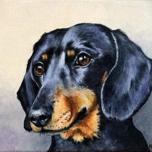 Barney - Example of pet portrait