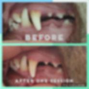 Collage 2019-08-11 19_21_28.jpg