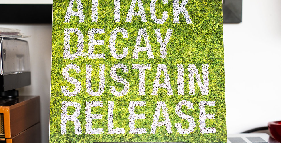 Simian Mobile Disco ‎– Attack Decay Sustain Release (2LP)