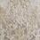 Thumbnail: ELEANOR 0020/19397 MAIN COLLECTION
