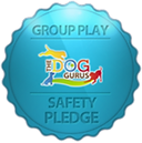 Group-play-safety-pledge-298x300.png