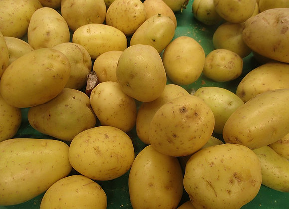 1kg de pommes de terre Agatha