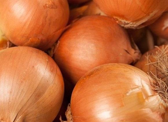 1kg d'oignons d'Oinville-sous-Auneau