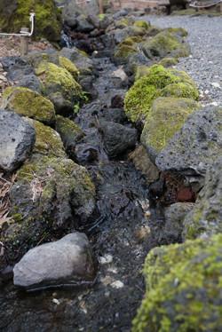 河口湖6.jpg