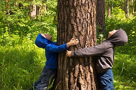 boys hugging tree.jpg