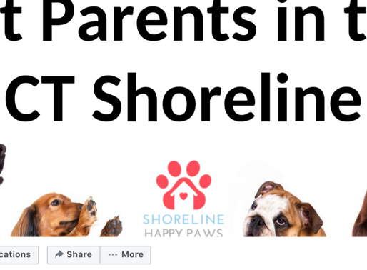 Join the CT Pet Parent Community!