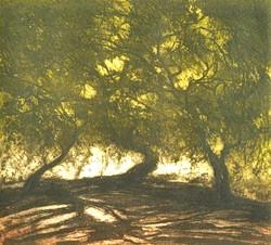 Aroma de las hojas verdes Aguafuerte sobre acero 20 x 23 cm $1,800.00