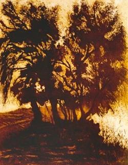 Santa Cecilia Aguafuerte y aguatinta sobre acero 50 x 38 cm 3,000.00