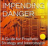 Impending Danger (Book Cover).jpg