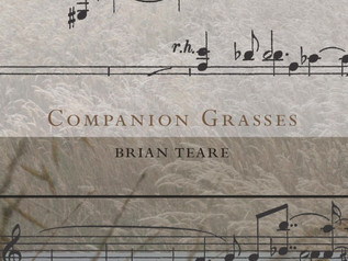 The Thicket of Context: Brian Teare's Companion Grasses