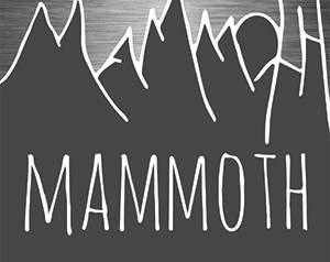 Chapbook Review: Mammoth by Rachel McKibbens