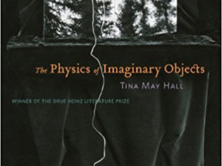Review of The Physics of Imaginary Objects