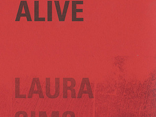 Review: Staying Alive by Laura Sims