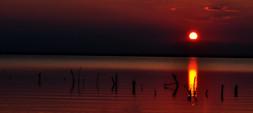 Texas Sunrise 1