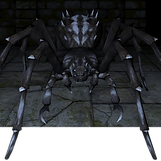 Giant_Spider_ig_sq.png