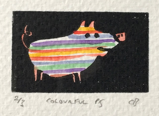 Colourful Pig