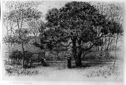 Sir Thomas More's Garden