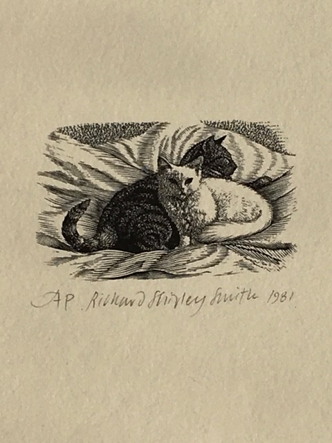 The Artist's Cat 1981, Mr.Pipkin