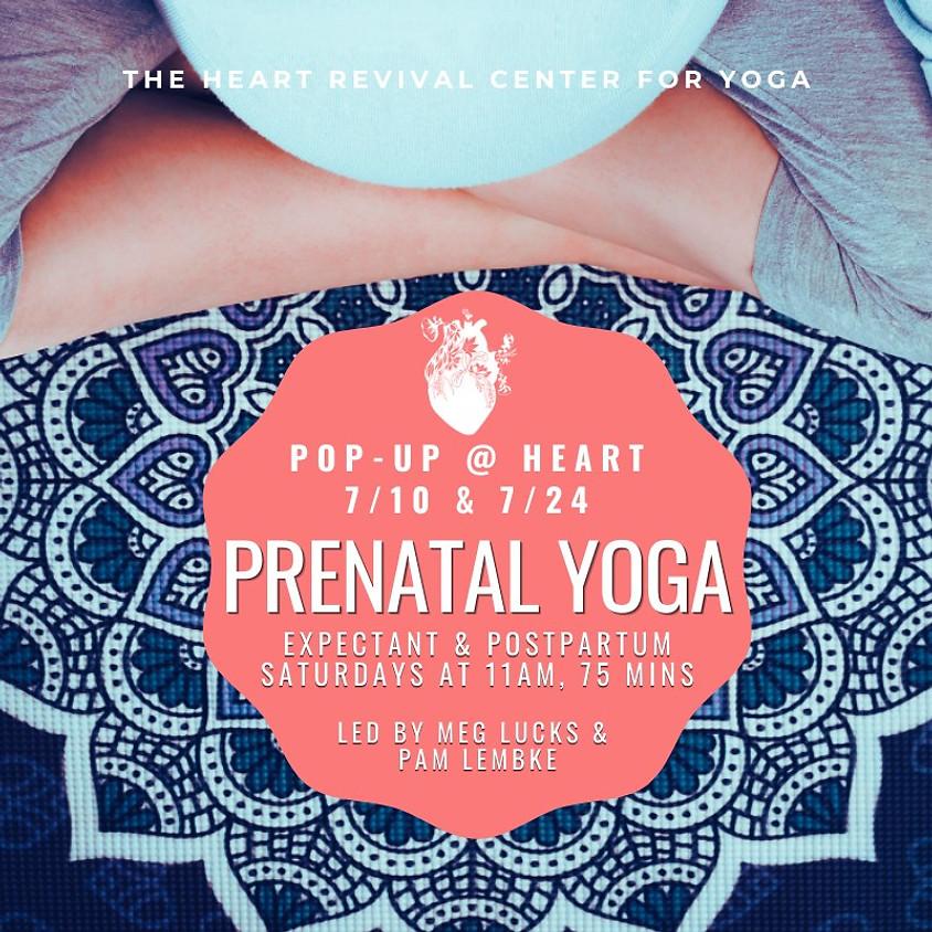 Pre/Postnatal Yoga Pop Up - July 24