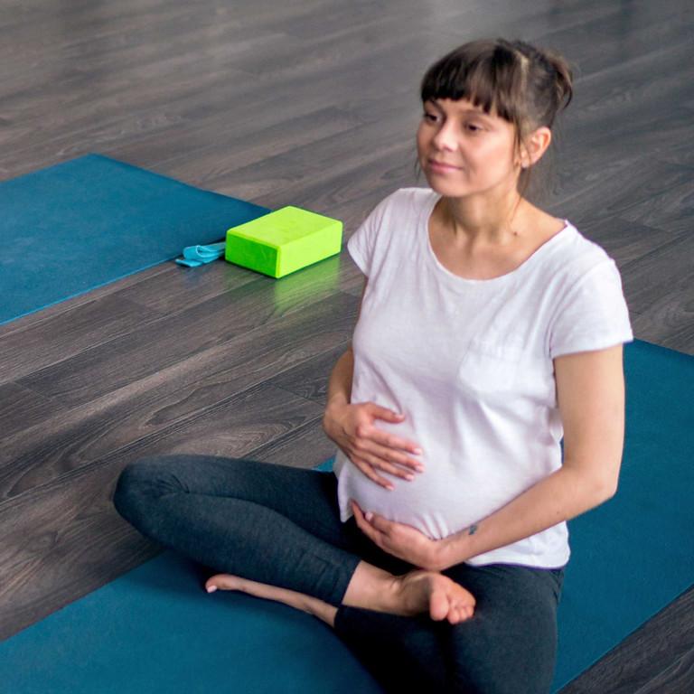 Module 2: The Energy Body in Pregnancy & Birth