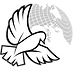 11Starling Row - Logo - Transparent.png