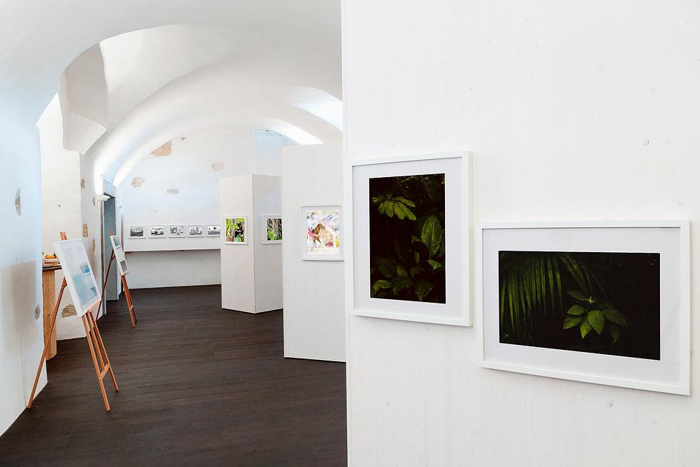 Foto-Showroom Aarau
