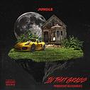 _jungleinthegrass.png