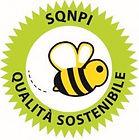Logo-forma-ape-247x300.jpg