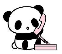 tel-panda.jpg