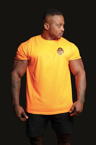 Training T-Shirt (Orange)