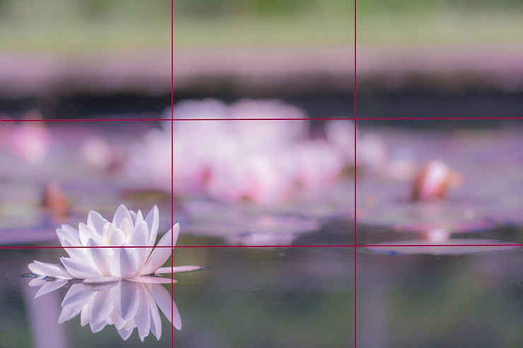 example of the rule of thirds